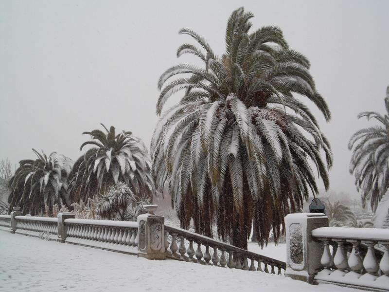 Neve a San Benedetto, 7 febbraio 2012 foto Ubaldo Maurizi 2