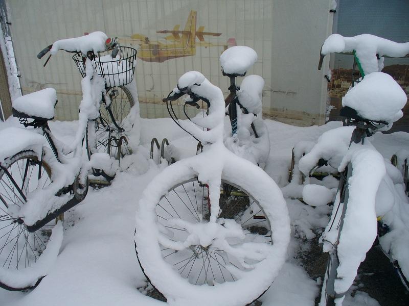 Neve a San Benedetto, 7 febbraio 2012 foto di Emanuele Bani 3
