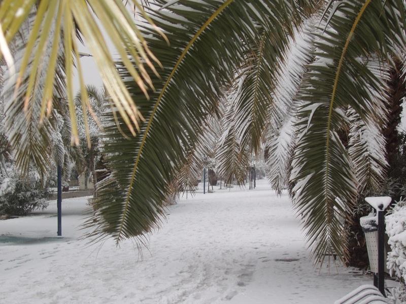 Neve a San Benedetto, 7 febbraio 2012 foto di Marco Stampatori 1
