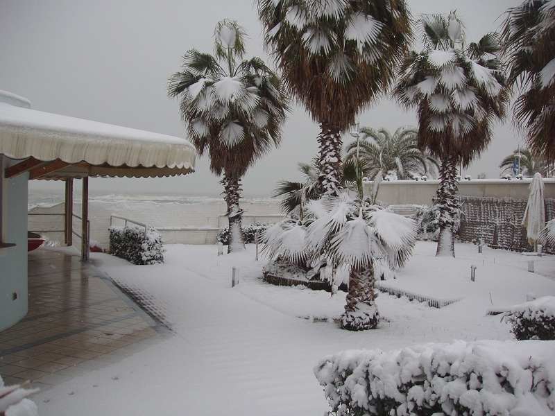 Neve a San Benedetto, 7 febbraio 2012 foto di Marco Stampatori 2