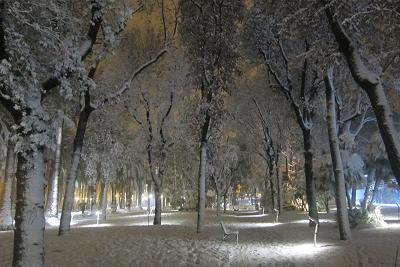 Neve a San Benedetto del Tronto, 3 febbraio 2012 foto di Andrea Sanguigni 1