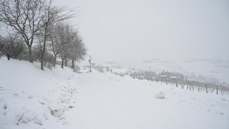 Neve a Trivio di Ripatransone, 10 febbraio 2012