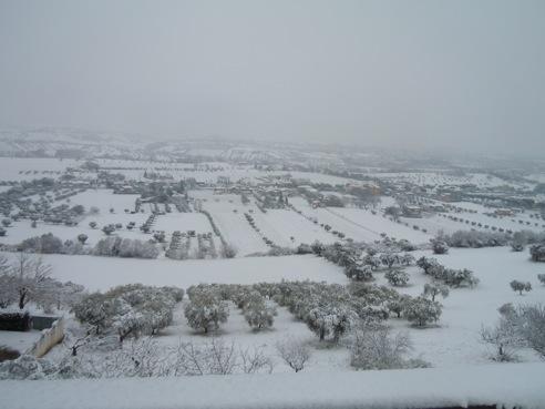 Neve a Val Vibrata 3 febbraio 2012 (di Martina Barbieri)