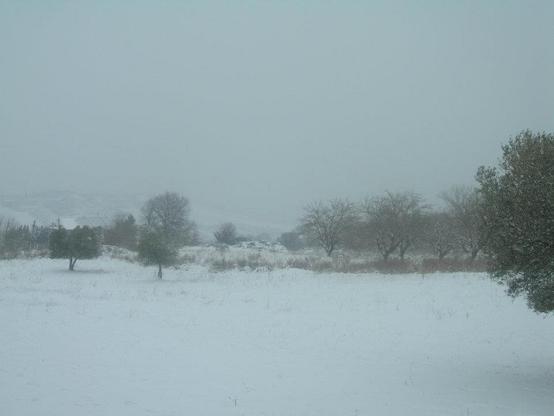 Neve ad Acquaviva Picena 3 febbraio 2012