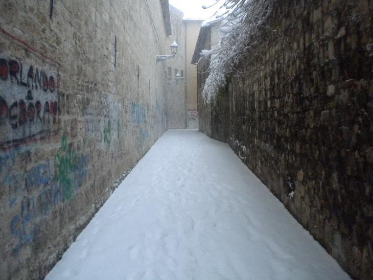 Neve ad Ascoli, 3 febbraio 2012 foto Domenico C. 2