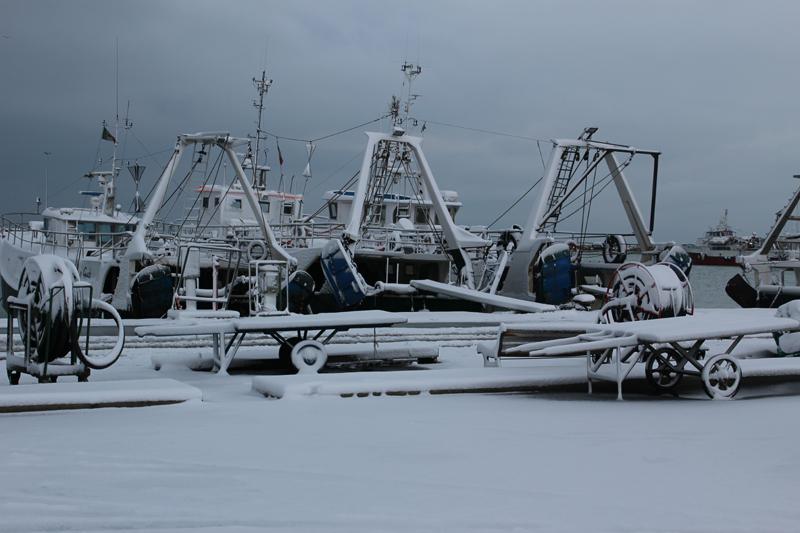 Neve al Porto di San Benedetto, 4 febbraio 2012 (mami9197)