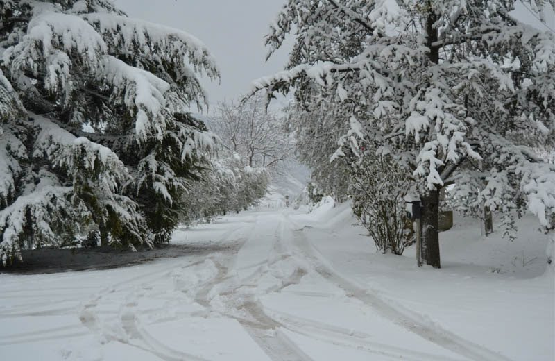 Neve al Trivio di Ripatransone, 3 febbraio 2012 3