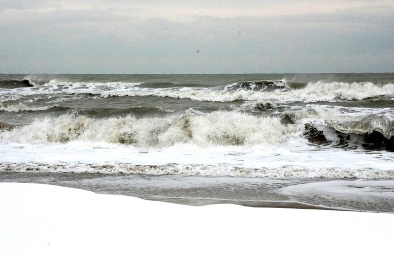 Neve alla Sentina, 7 febbraio 2012 foto di Sonia Marinucci 1
