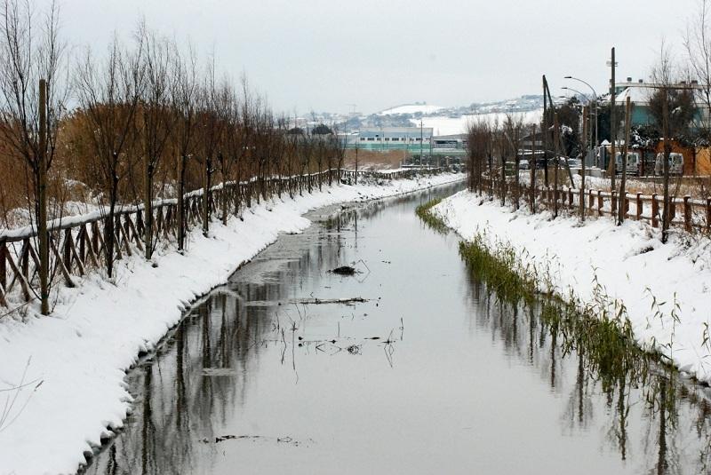 Neve alla Sentina, 7 febbraio 2012 foto di Sonia Marinucci 2