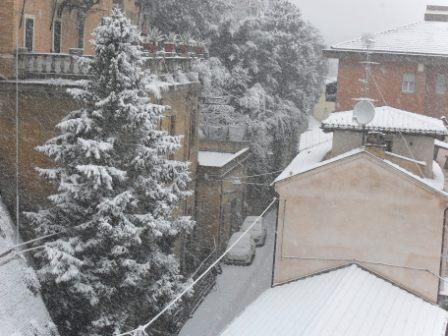 Neve centro di San Benedetto 3 febbraio (Maria Paola Salzano, San Benedetto) 2