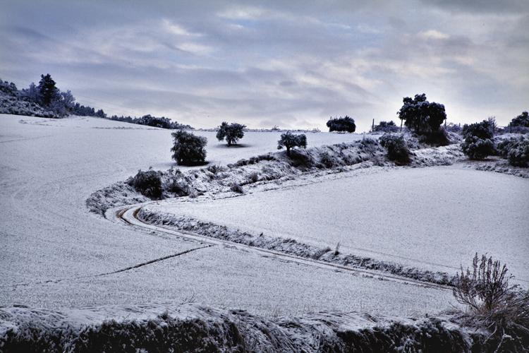 Neve febbraio 2012, Alberto Maranesi, incanto collinare