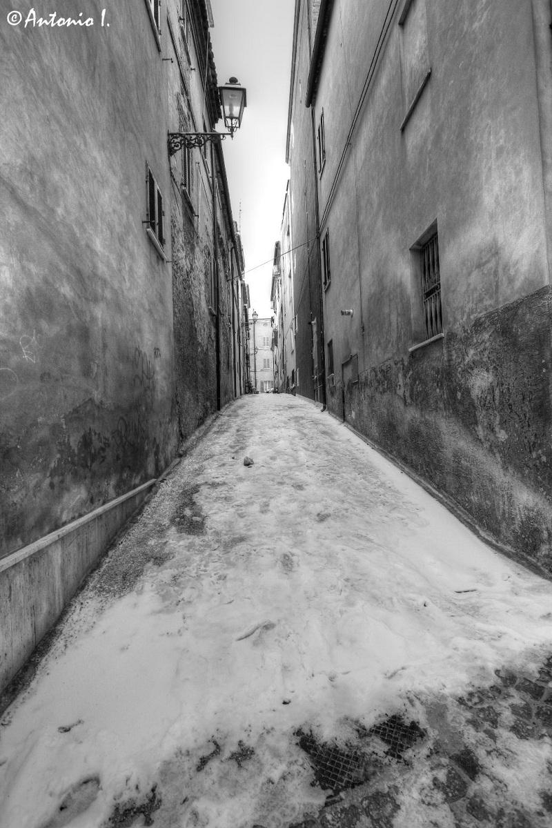 Neve in via Ariosto (Paese Alto) 6 febbraio 2012 foto Antonio I. 3