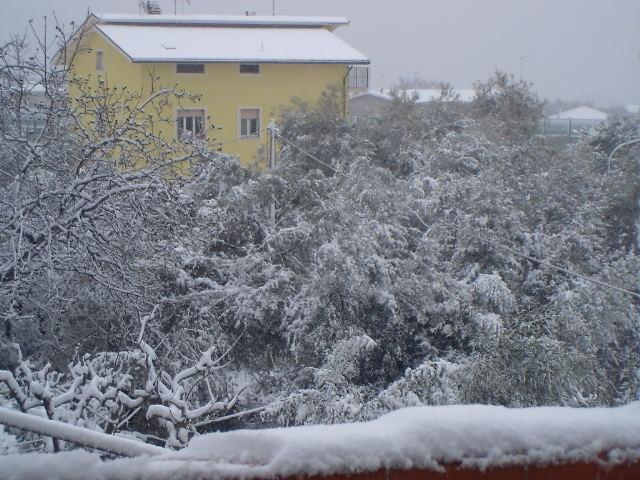 Neve sulla Valtesino, 3 febbraio 2012 (foto di Gabriele)