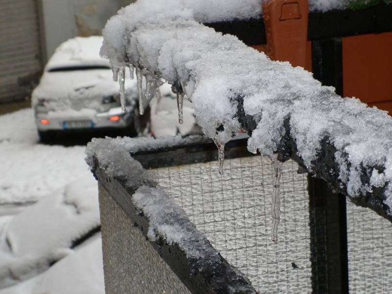 P1San Benedetto, neve febbraio 2012 (serena stella spina)