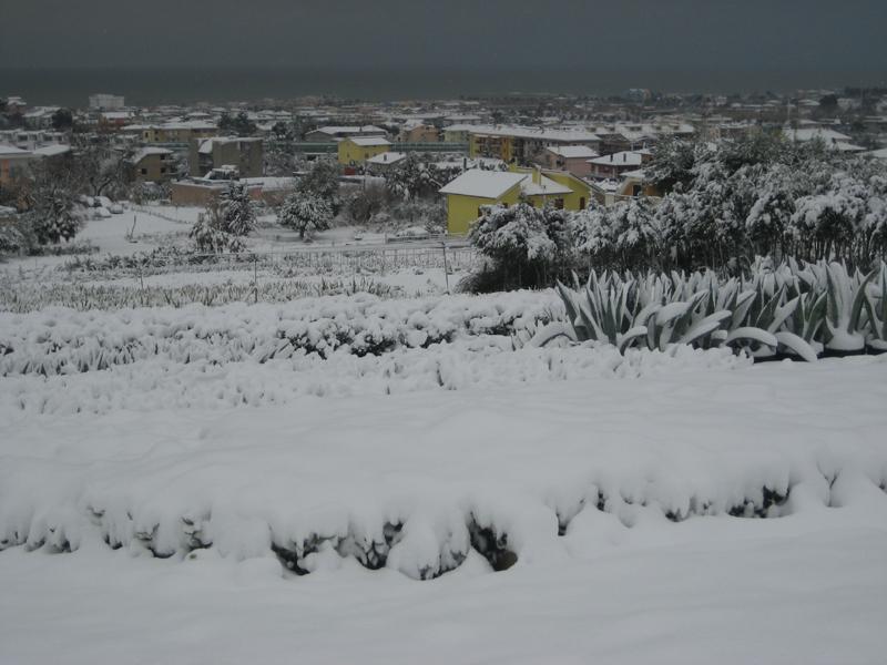 Panorama su Grottammare innevata, 4 febbraio 2011, di Katia Ferracuti