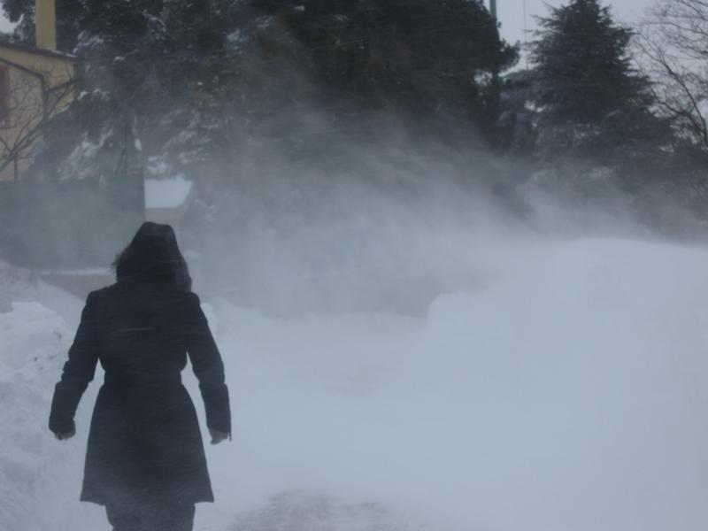 Petrella di Ripatransone neve 4 febbraio, Roberto Pasquali