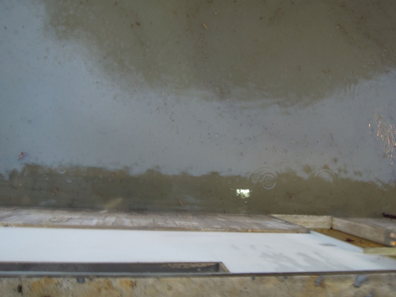 Pioggia 21 febbraio, allagamenti quartiere Sant'Antonio zona via Monfalcone (Fulvio Baiocchi) 1