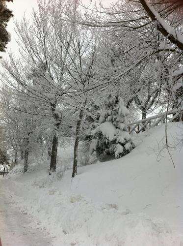 Ripatransone e tanta neve, 4 febbraio 2012 (katia ferracuti9