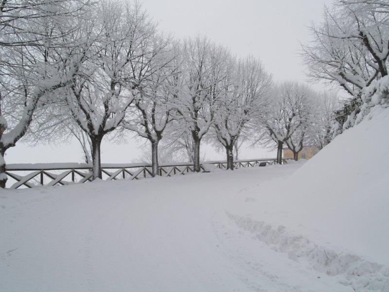 Ripatransone, neve del 5 febbraio 2012, Lorenzo Guidi 3