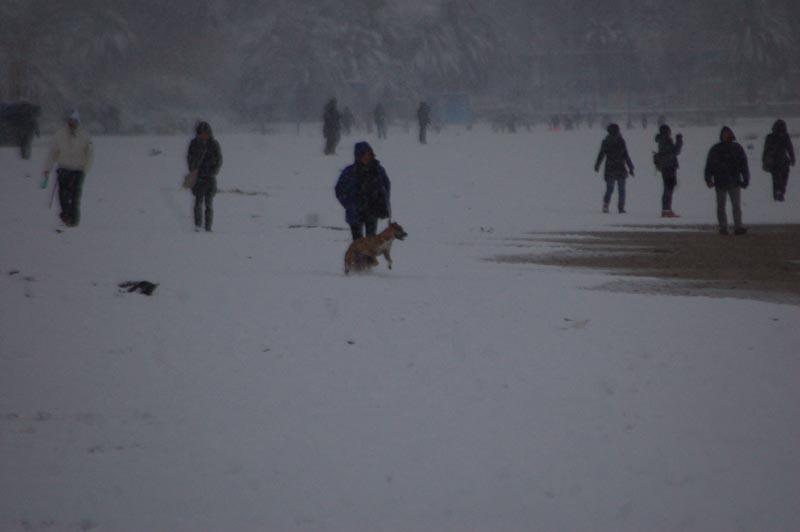Roberto Bartolomei, neve su San Benedetto 3 febbraio gente in spiaggia 3