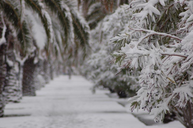 Roberto Bartolomei, neve su San Benedetto 3 febbraio il corso