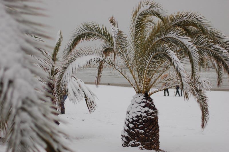 Roberto Bartolomei, neve su San Benedetto 3 febbraio