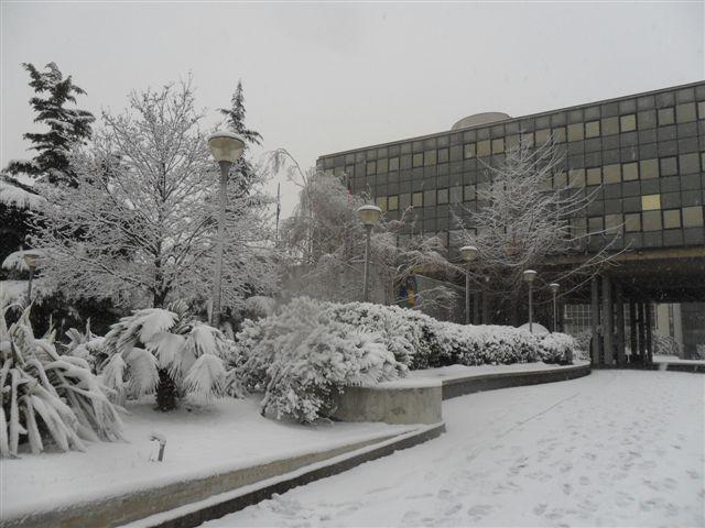 S.Benedetto Tr. - il Comune neve 4 febbraio (2) (da Federico Olivieri)
