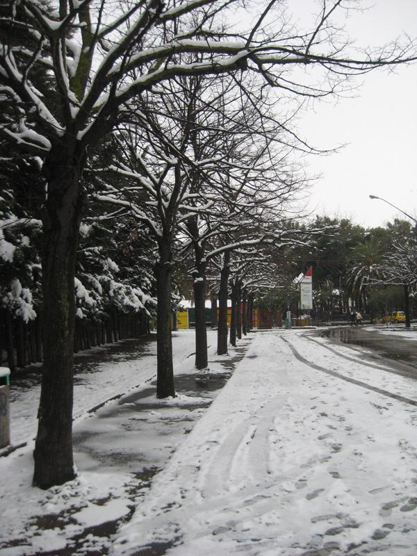 San Benedetto e la neve, il 5 febbraio. Foto di Sandra