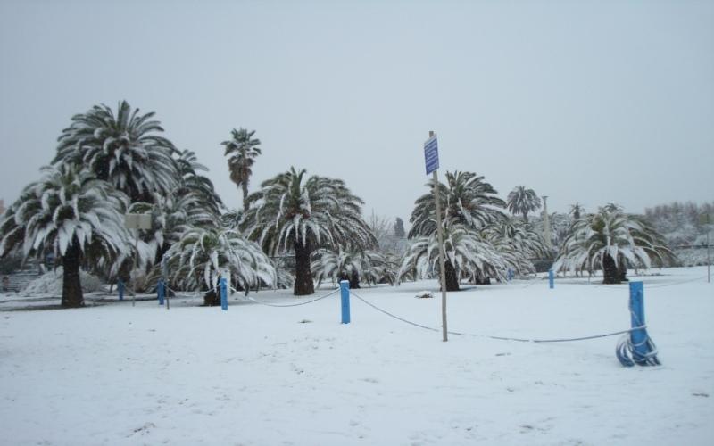 Neve a San Benedetto, 3 febbraio (Marco Di Iacovo)
