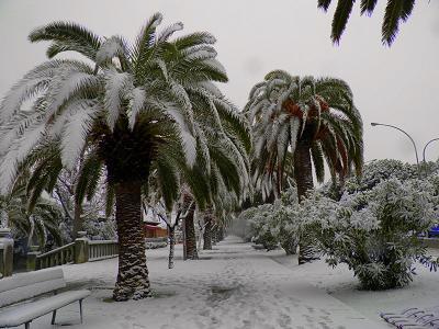 San Benedetto del Tronto,  3 febbraio 2012 (foto di Elvia Ricci)