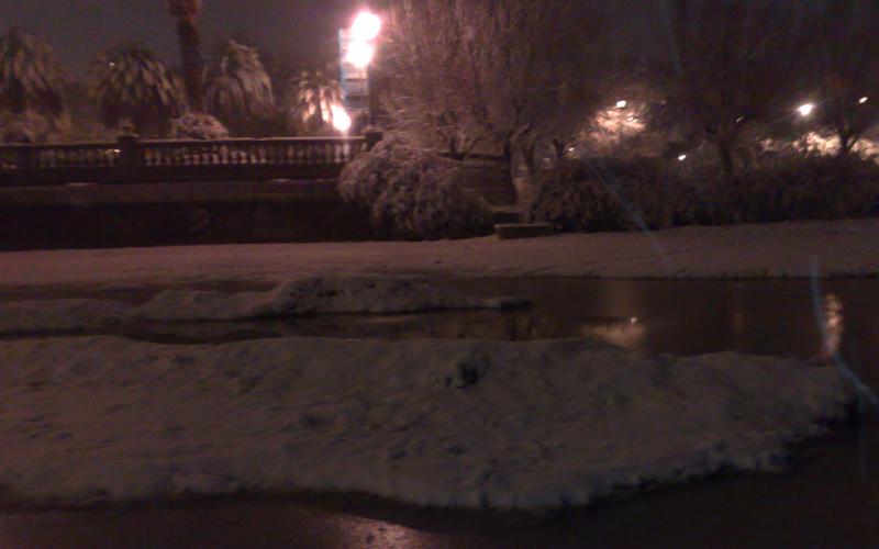 San Benedetto, neve del 3 febbraio, foto di Emanuela Maranesi 1