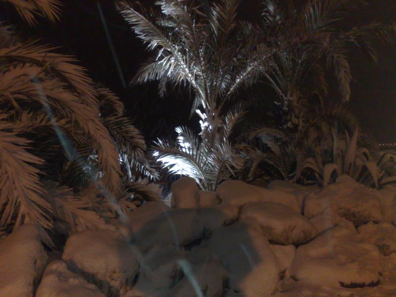 San Benedetto, neve del 3 febbraio, foto di Emanuela Maranesi 5