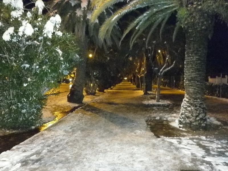 San Benedetto, neve febbraio 2012 (serena stella spina) 2
