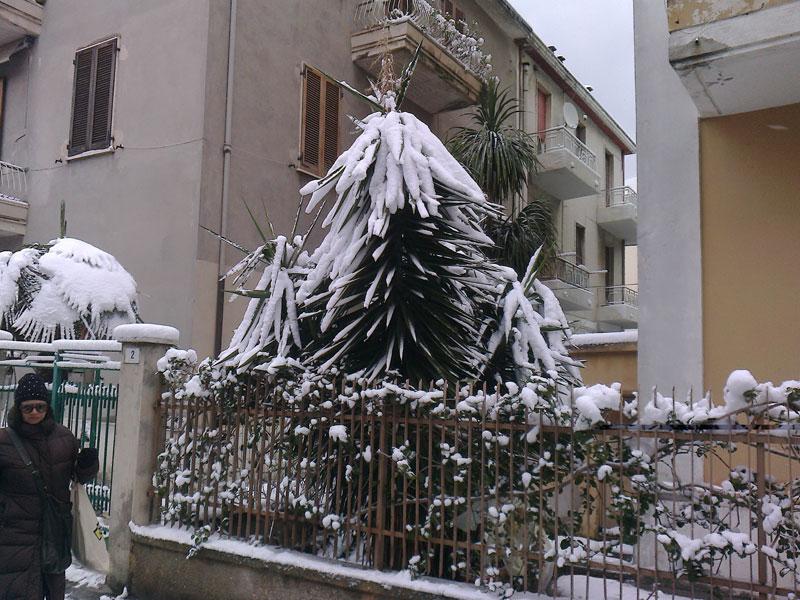 San Benedetto, neve febbraio 2012