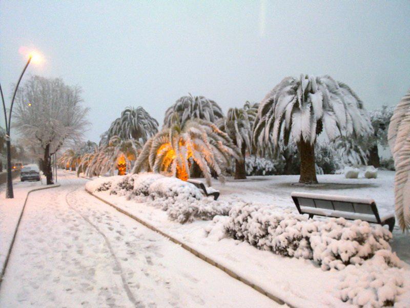 San Benedetto neve febbraioperozzi4