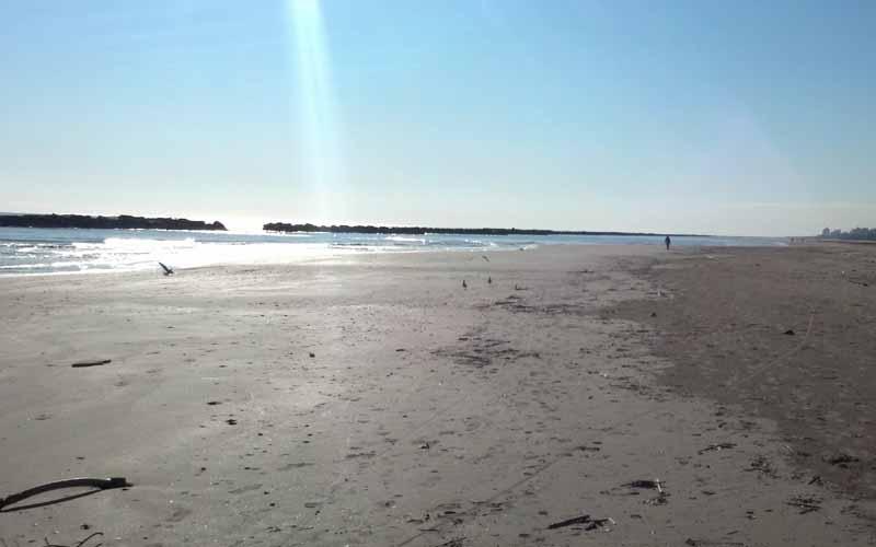 Spiaggia di San Benedetto, 28 febbraio 2012 3