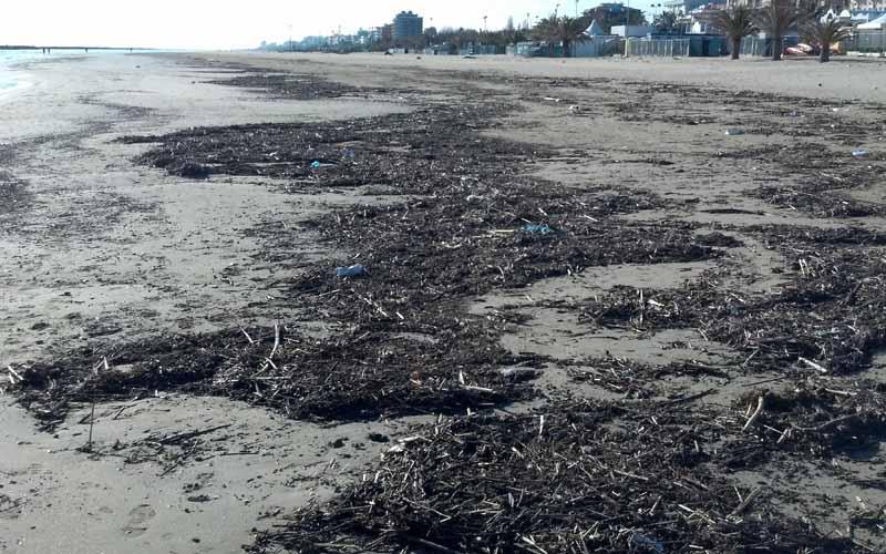 Spiaggia di San Benedetto, 28 febbraio 2012 5
