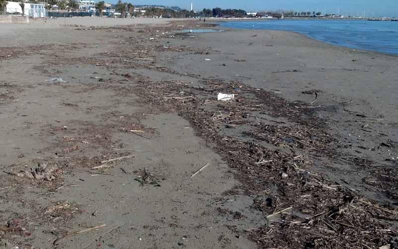 Spiaggia di San Benedetto, 28 febbraio 2012 6