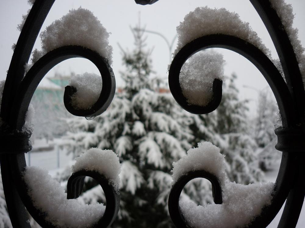 Stella di Monsampolo, 3 febbraio 2012 (foto di Enrico Campanelli)
