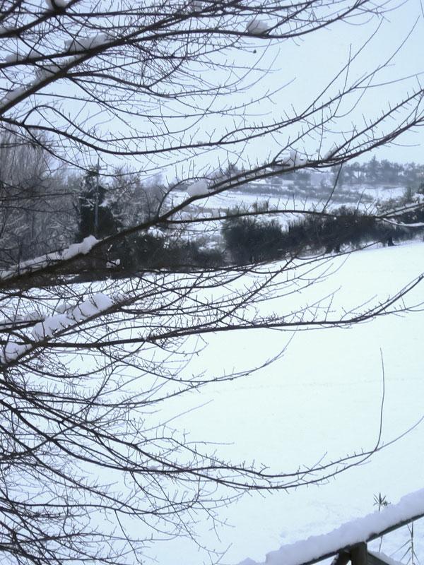 Neve a Stella di Monsampolo, 4 febbraio 2012