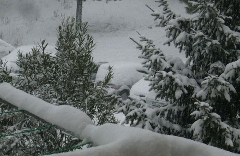Neve ad Acquaviva Picena (Martina)