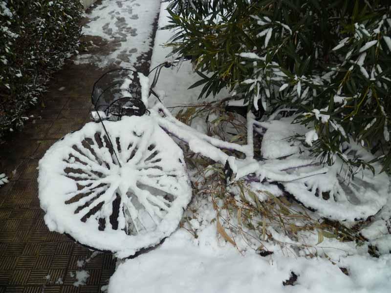 Foto della neve di Francesco Di Biagio, la bicicletta