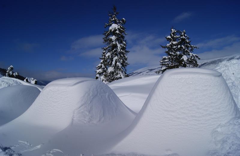 Neve febbraio 2012 (Cimini Fausto)