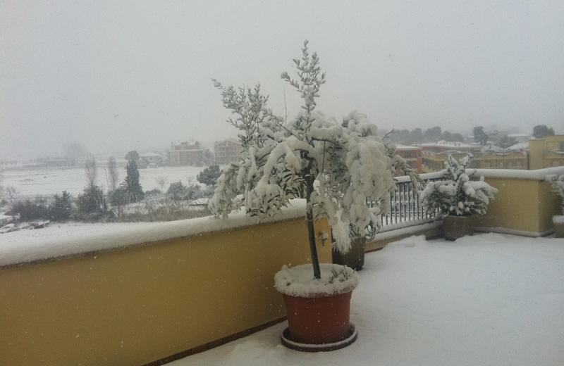 Neve a Martinsicuro 3 febbraio 2011 (Città Attiva)