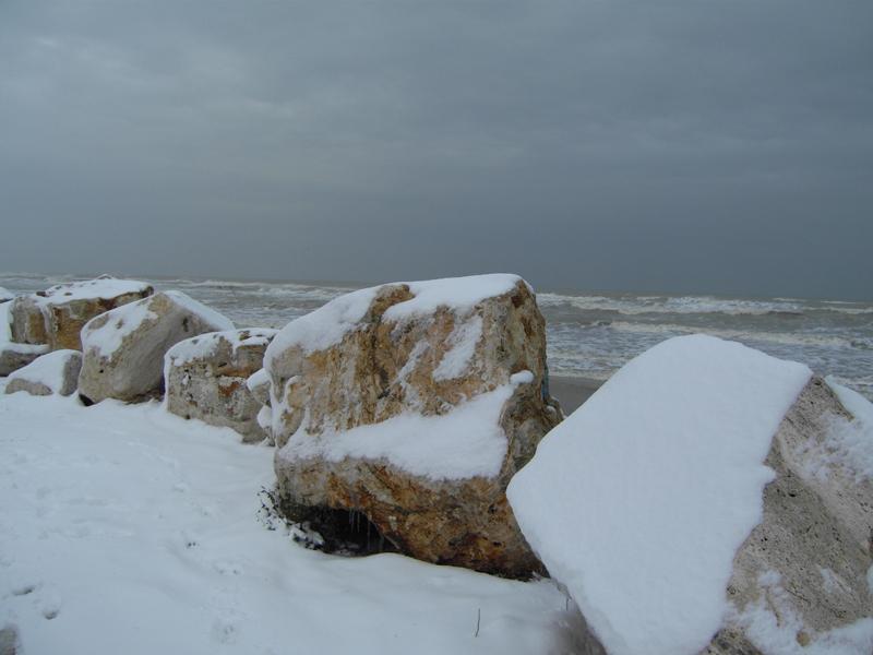 La neve vista da Fabio Portelli