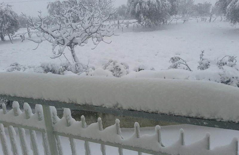 Neve a Controguerra 3 febbraio 2012 (Simone Roncacè)