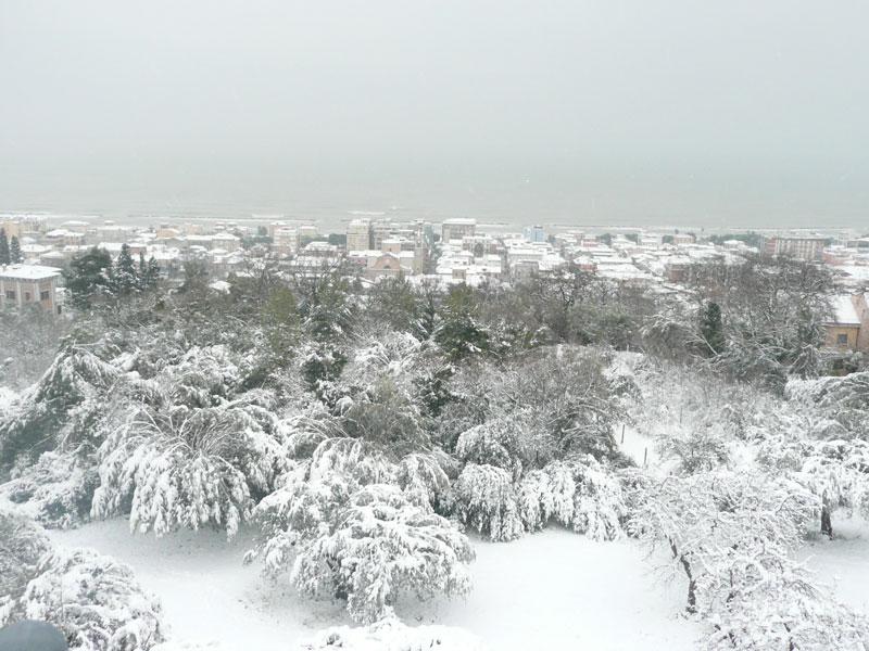Neve a Grottammare 3 febbraio 2012 (Alessandra S)