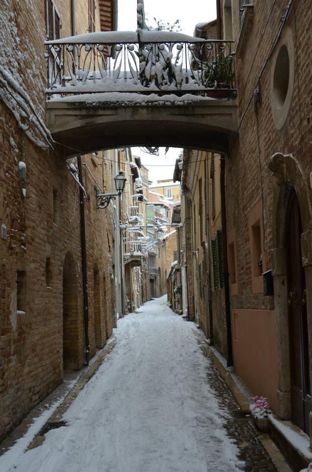 Neve febbraio 2012 Monsampolo del Tronto (Tonino Recchioni)