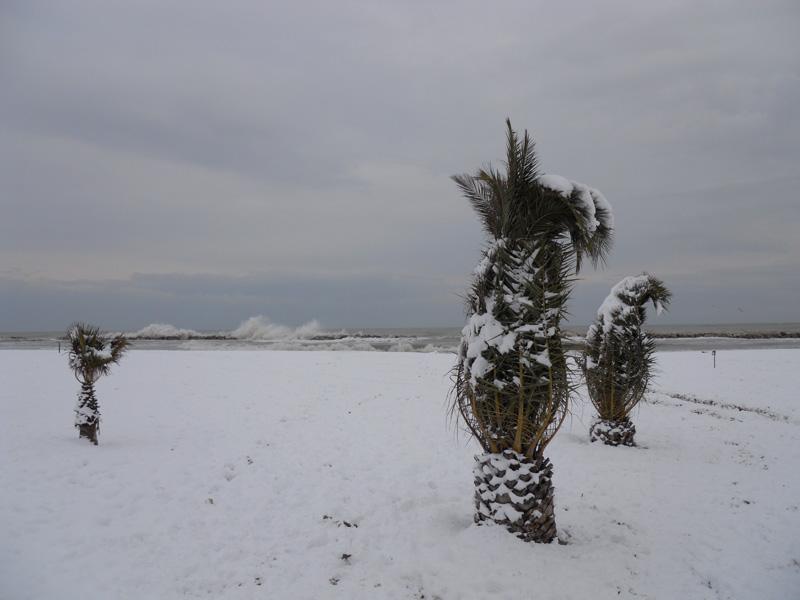 Neve a San Benedetto 4 febbraio 2012 (Claudio)