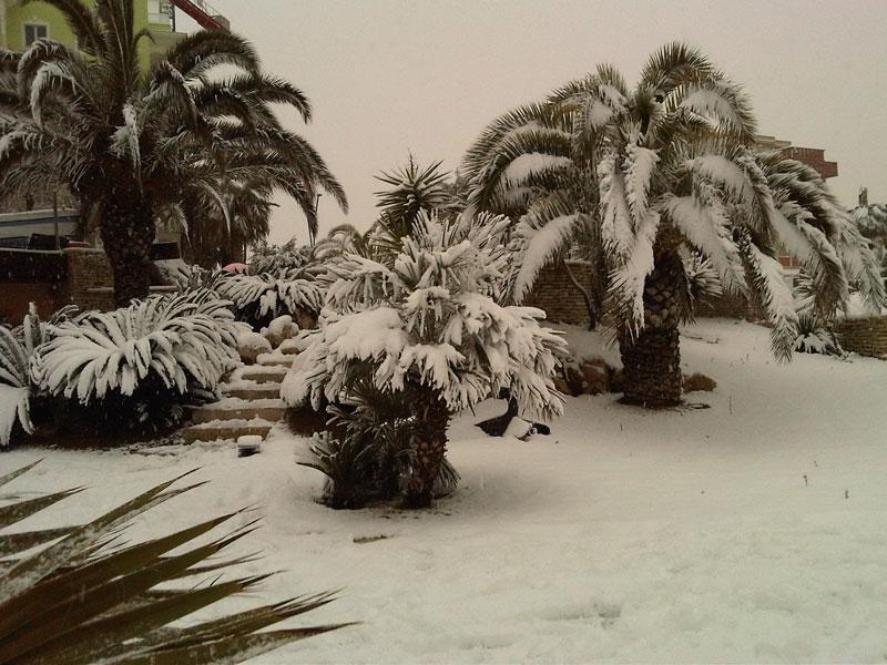 Neve a San Benedetto del Tronto 4 febbraio 2012 (Marchegiani Gianfilippo)